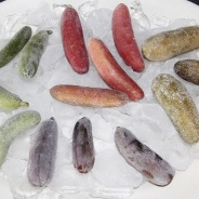 Finger Limes – Getting the best out of your fresh or frozen fruit