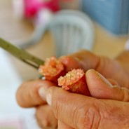Gardening Australia features Finger Limes