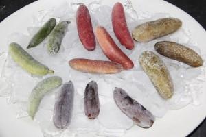 Frozen Finger Lime varieties